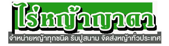 ไร่หญ้าญาดา : จำหน่ายหญ้าทุกชนิด, หญ้านวลน้อย, หญ้าญี่ปุ่น, หญ้าพัทลั่ม, หญ้ามาเลเซีย, หญ้าเบอมิวด้า, รับปูสนามหญ้า, จัดสวน